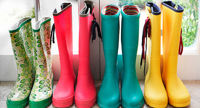 Wellies home image